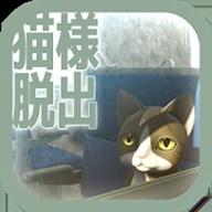 从车窗逃脱的猫图标
